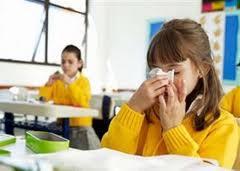 alergidinginn